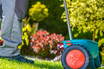 Spring Lawn Care: When Is The Best Time To Fertilize in Cleveland?