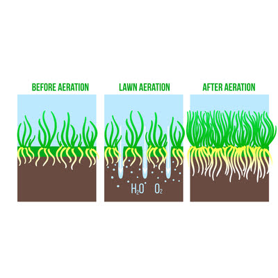 Fall lawn aeration will give your grass roots easier access to water, air, and nutrients; boosting the health of your Cleveland, OH lawn.
