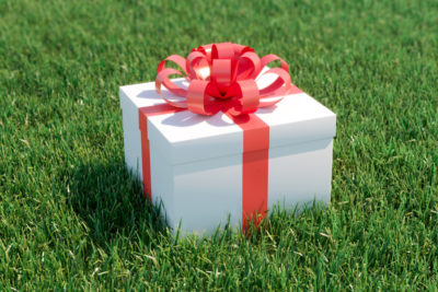 Looking for the Best Gift of 2019? Try a Lawn Care Program.